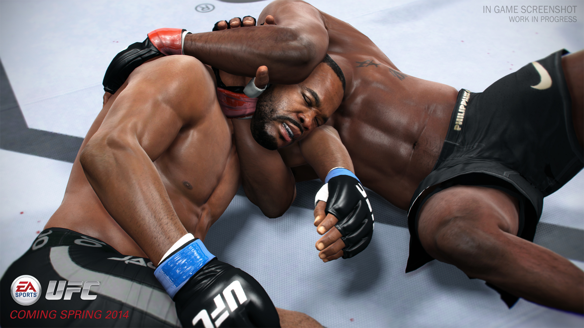 EA Sports UFC ps4 image2.jpg